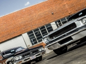 Ford Mustang 65 y Chevrolet Chevelle 66 ( imagenes )