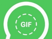 WhatsApp no te reproduce gif o videos? Pasá, papu