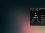 Arch Linux 2013.11.01