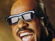 10 Exitos : Stevie Wonder