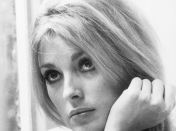 Recordando a Sharon Tate (fotos)