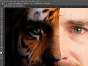 Tutoriales de photoshop completos + Links + Videos