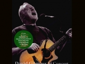 David Gilmour - Live at Robert Wyatt's (2002)