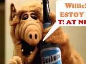Hoy sale T! at night , entra lince